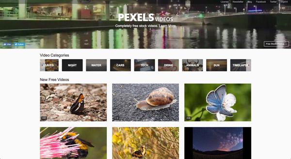 Descargar vídeos gratuitos en Pexels