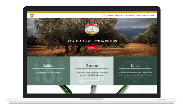 Desarrollo a medida de ecommerce de Aceites Echinac